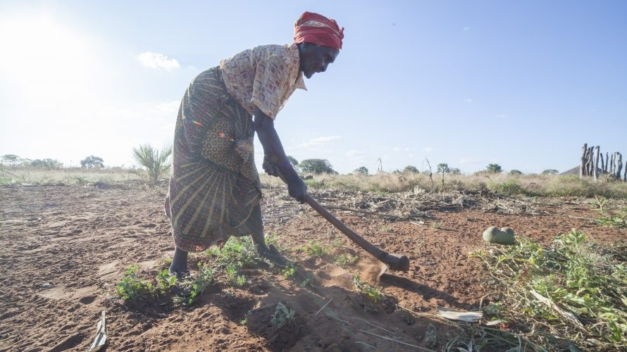 Cash transfers key to tackling poverty and hunger in Africa