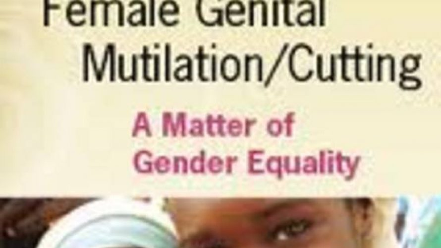 Donors Working Group on Female Genital Mutilation/Cutting