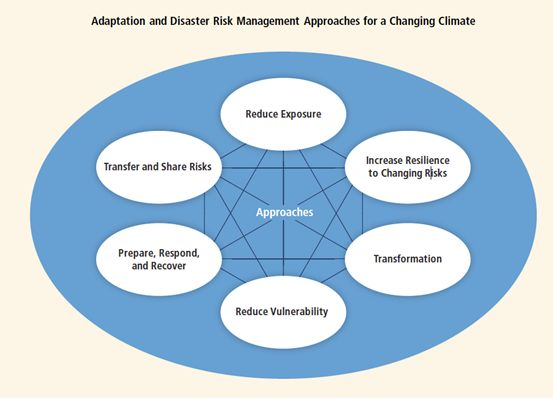 Adaptation and disaster risk management approaches